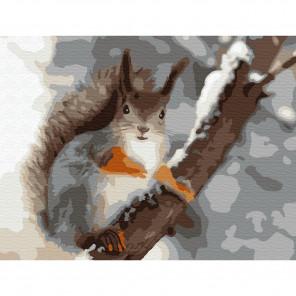 Белочка Раскраска по номерам на холсте Molly KH0777