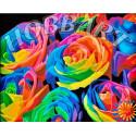 Радуга роз Раскраска по номерам на холсте Hobbart Lite HB4050003-Lite