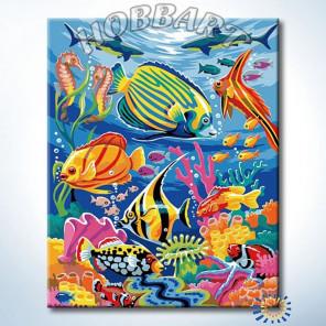 Подводное многоцветье Раскраска по номерам на холсте Hobbart Lite HB4050022-LITE