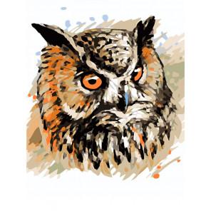 Мудрая сова Раскраска картина по номерам на холсте ME1123