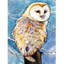 Амбарная сова Раскраска картина по номерам на холсте ME1124