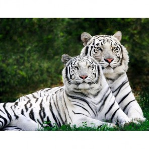 Влюбленные тигры Алмазная вышивка (мозаика) Гранни