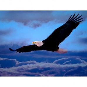 Парящий орел Алмазная вышивка (мозаика) Гранни