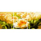 Тюльпаны Триптих Раскраска по номерам акриловыми красками на холсте Color Kit