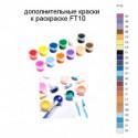 Дополнительные краски для раскраски FT10