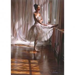 Балерина у окна Алмазная вышивка (мозаика) Гранни
