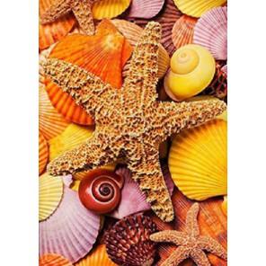 Ракушки и звезды Алмазная вышивка (мозаика) Гранни
