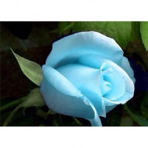 Голубая роза Алмазная вышивка (мозаика) Гранни