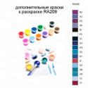 Дополнительные краски для раскраски RA209