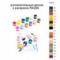 Дополнительные краски для раскраски RA224