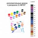 Дополнительные краски для раскраски Z-AB187