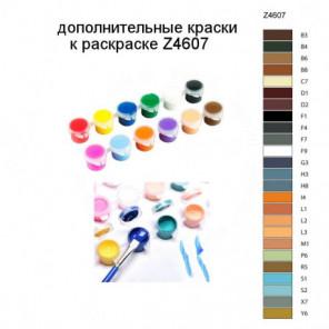 Дополнительные краски для раскраски Z4607