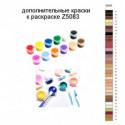 Дополнительные краски для раскраски Z5083
