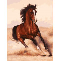 Галоп Раскраска картина по номерам на картоне Белоснежка 3107-CS