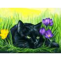 Кот и крокусы Раскраска картина по номерам на картоне Белоснежка 3113-CS