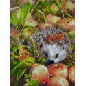 Яблочный ёжик Раскраска картина по номерам на картоне Белоснежка 3140-CS