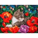 Кот в маках Раскраска картина по номерам на картоне Белоснежка 3183-CS