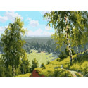 Березовая долина Раскраска картина по номерам на холсте PKC76038