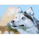 Снежный. Собака Раскраска картина по номерам на холсте PKC76014