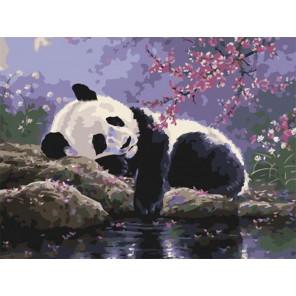 Отдых панды в саду под сакурой Раскраска картина по номерам на холсте EX6535