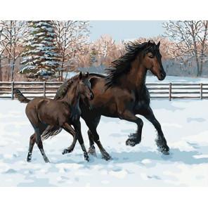 Кони, скакуны. Зимняя пора Раскраска картина по номерам на холсте GX33695