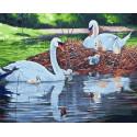 Семья лебедей Раскраска картина по номерам на холсте GX31767