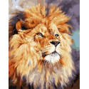 Лев - царь зверей Раскраска картина по номерам на холсте GX30769