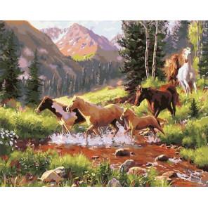 Табун лошадей в горных лесах Раскраска картина по номерам на холсте GX30717