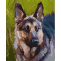 Овчарка Раскраска картина по номерам на холсте PK59092