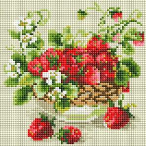 Садовая земляника Алмазная вышивка мозаика без подрамника Белоснежка 476-ST-PS