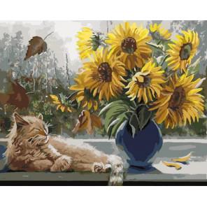 Кот и подсолнухи Раскраска картина по номерам на холсте PK79019