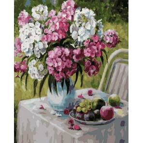 Флоксы в моем саду Раскраска картина по номерам на холсте PK79057
