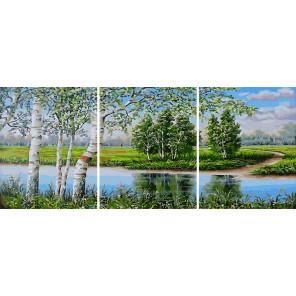 Сложность и количество цветов Белые березы Триптих Раскраска картина по номерам на холсте РХ5317