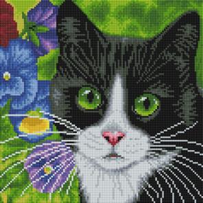 Кот в анютиных глазках Алмазная вышивка мозаика на подрамнике 520-ST-S