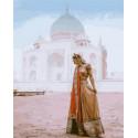 Красота Агры Раскраска картина по номерам на холсте MCA829