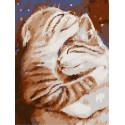 Мурчу тобою. Два кота Раскраска картина по номерам на холсте PKD76049