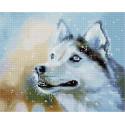Снежный. Собака Алмазная вышивка мозаика на подрамнике QAPK59006