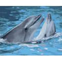 Игры дельфинов Раскраска картина по номерам на холсте GX33064