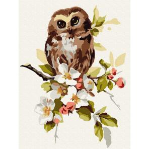 Совёнок на яблоне Раскраска по номерам на холсте Molly KH0923