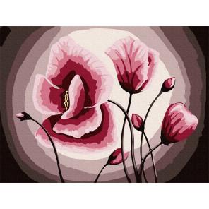 Розовые маки Раскраска по номерам на холсте Molly KH0924