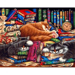 Библиотека кошек Раскраска картина по номерам на холсте 275-AB