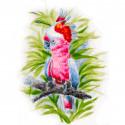 Розовый попугай Раскраска картина по номерам на холсте 361-AS