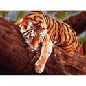 Тигр на дереве Раскраска картина по номерам на холсте 364-AS