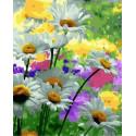 Вдохновение природой Раскраска картина по номерам на холсте MCA1058