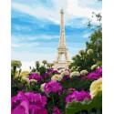 Французские цвета Раскраска картина по номерам на холсте MCA1072