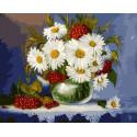 Ромашки и рябина Раскраска картина по номерам на холсте GX37396