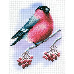 Румяная пташка Канва с рисунком для вышивки МП Студия СК-028