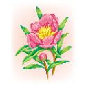 Радость Канва с рисунком для вышивки МП Студия СК-032