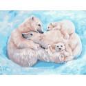Все вместе. Семья белых медведей 30х40 см Раскраска картина по номерам на холсте PKC79060