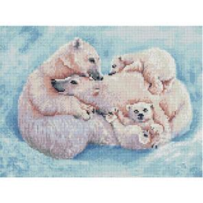 Все вместе. Семья белых медведей 30х40см Алмазная мозаика вышивка на подрамнике ACPK79060